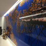 Hampshire Wall Murals IMG 4744 150x150